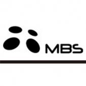 Печи-камины MBS